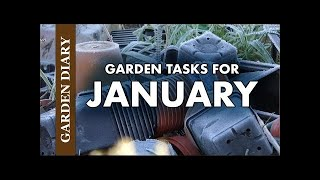 Garden Diary: What to do in the garden and on the allotment in January