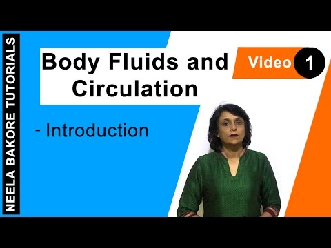 Body Fluids And Circulation - Introduction