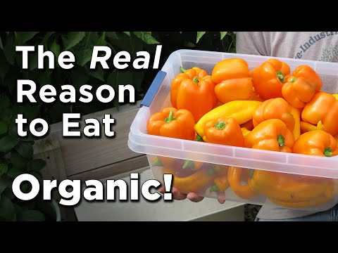 Food Hazards? GMO's vs NonGMO vs Organics -Avoiding Monsanto's Roundup (glyphosate) Contamination