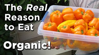 Food Hazards? GMO's vs NonGMO vs Organics -Avoiding Monsanto's Roundup (glyphosate) Contam