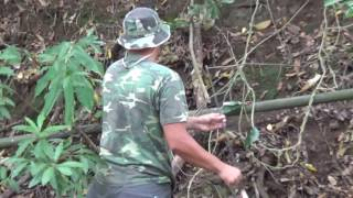 Archery Bow and Arrow nowdays of a primitive technology