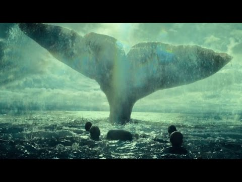 Moby Dick - Banco Del Mutuo Soccorso [con testo a video]