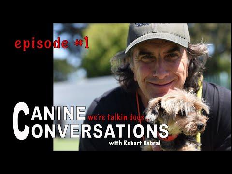 Canine Conversations - talking dog training - Dog Training Podcast
