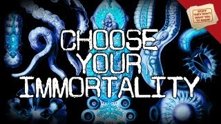 3 types of immortality digging deeper