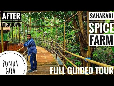 spice plantation goa | sahakari spice farm ponda goa | food and forest | goa ride part-3