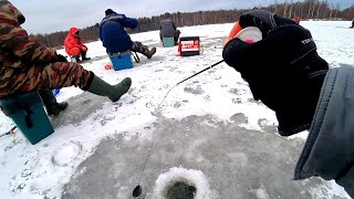 Обловил всех на водоёме Игра мормышки РЕШАЕТ когда рыба капризна Зимняя рыбалка 2020 2021