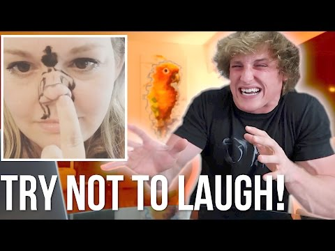 Thumbnail: TRY NOT TO LAUGH CHALLENGE! (Good Luck!)