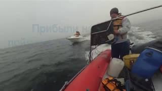 поїздка за тріскою в Пертоминск, біле море 9.06.17