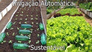 Sistema de Irrigação Automática por Gotejamento para Horta usando Garrafas Pet e Barbante 2
