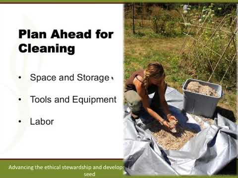 Organic Seed Production 2017 Part 5: Seed Cleaning and Recordkeeping