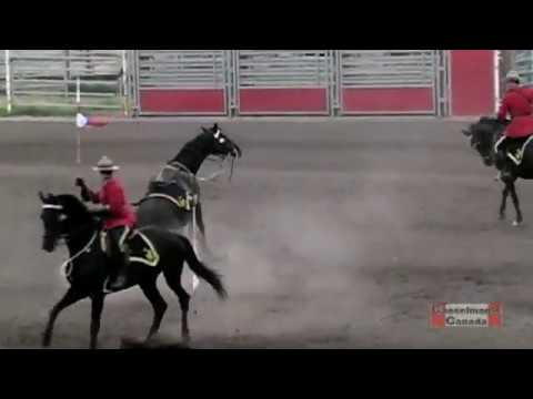 RCMP horse throws rider during Musical Ride