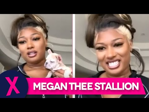 Megan Thee Stallion Shows Off Her Puppies In Quarantine | Capital XTRA