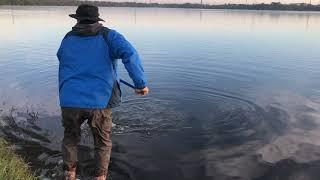 Fishing for Carp San Antonio Texas Рыбалка на карпа Сан Антонио Техас