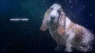 Звездная семерка из Перми