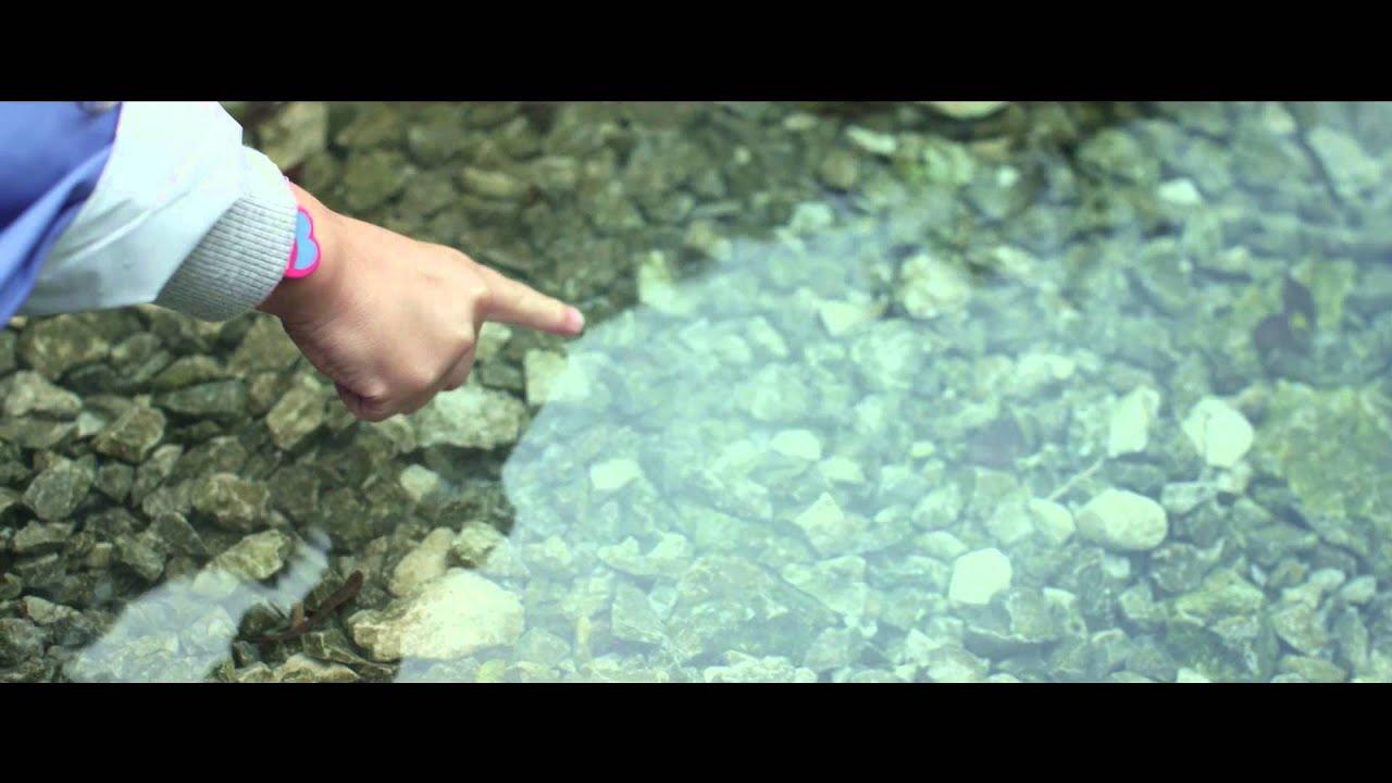 "Download Elisa - ""A modo tuo"" - (official video 2014)"