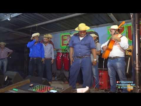 TORRENTE LLANERO Y PICAO - FIESTA DE LICENCIADO EDUARDO MATA