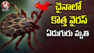 New virus in China: Tick-borne virus has infected 67 people, 7 dead | V6 News