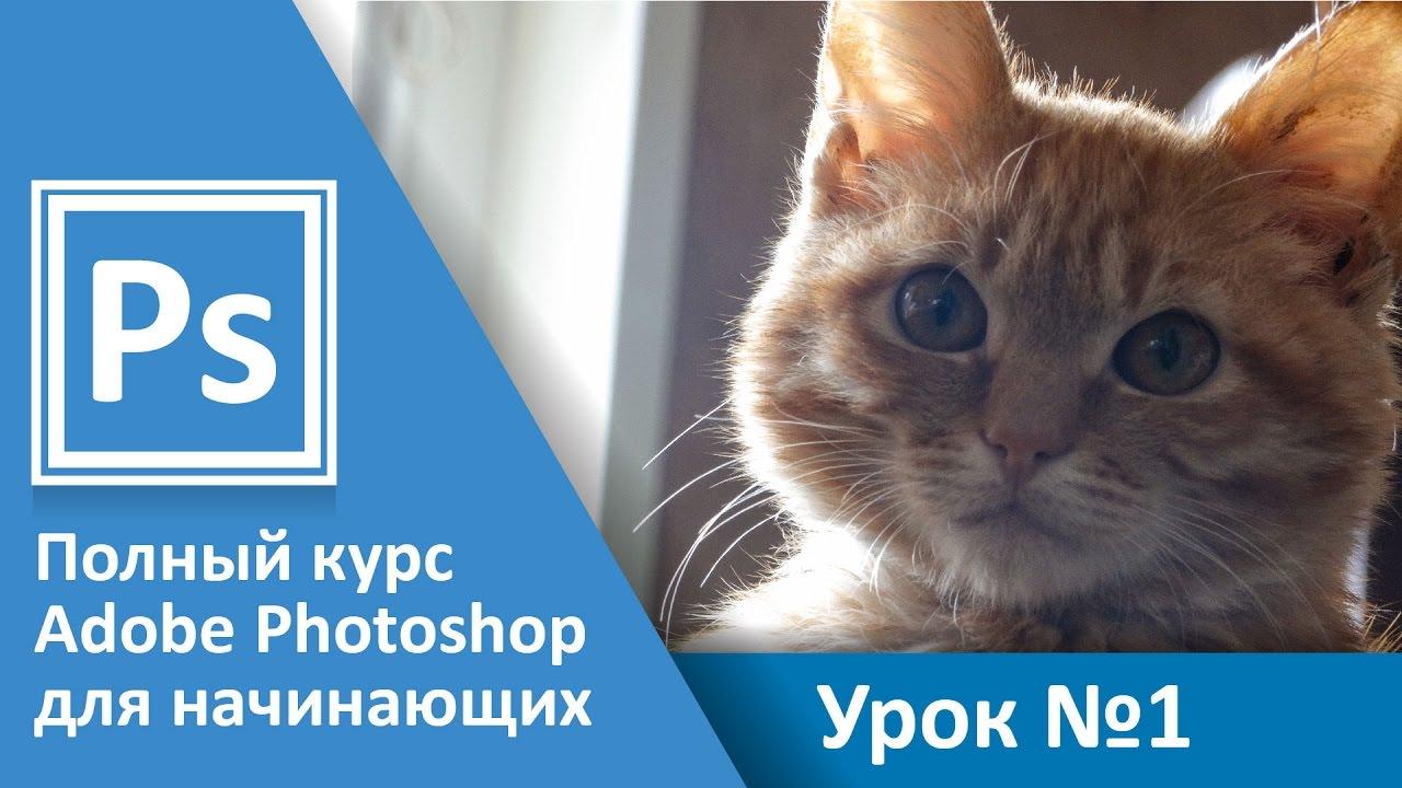 Урок 1 - Введение. Полный курс Adobe Photoshop с нуля ...