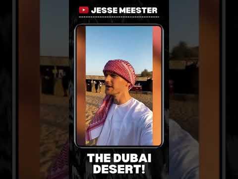 THE DUBAI DESERT! 🐫