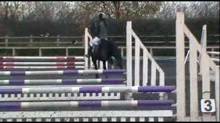 Cefn Gelli Royal Princess at Port Royal eec-75cm Speed Round