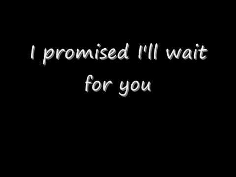 I Promised Myself- Basshunter Lyrics
