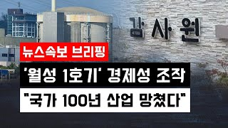 """[뉴스속보] 감사원 """"월성 1호기 경제성 조작…"""
