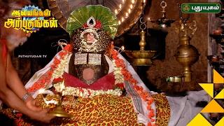 Mayuranathaswami Temple, Mayiladuthurai | Aalayangal Arputhangal | 06/02/2017
