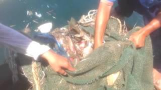 Рыбалка во Вьетнаме,ужас что на дне моря находиться!