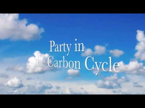 Carbon cycle song!!