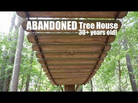 """Abandoned Tree House (""""Ewok Village-Like"""")- 30+ years later! Adult-built."""