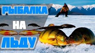 Рыбалка на льду  - открытие сезона (охота за окунем).