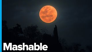"""A """"super blood wolf moon"""" is the combination of full moon, and total lunar eclipse. when it appears bigger to viewers due ..."""