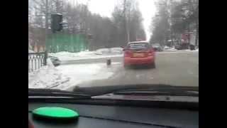Собака ловит такси)