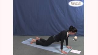 Yoga för alla - Omstart (L,M)