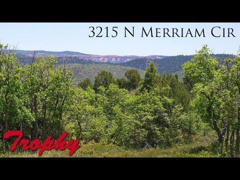 A Slice of Paradise - 3215 N Merriam Cir, Duck Creek Village, Utah