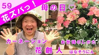 旬の花とその活かし方をズバっ!と紹介する【花ズバっ!】 第59回は、母...