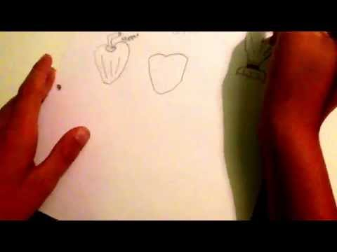 how-to-draw-a-cartoon-pepper