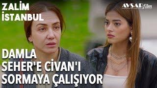 Damla Ve Seher'in Komik Diyaloğu, Giden Var Mı?   Zalim İstanbul 17. Bölüm