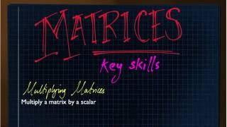 Matrices Key Skills - Recap for Further Maths GCSE (AQA)