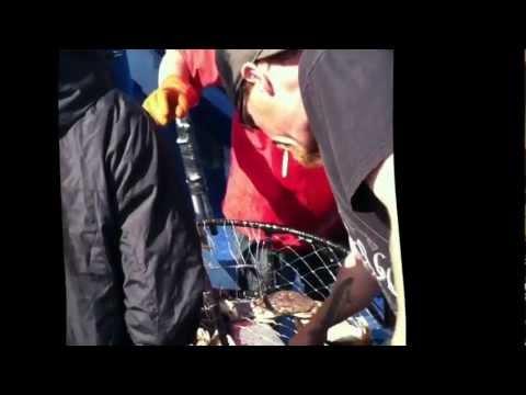 Deep Sea Fishing Tradewinds Newport Oregon 2012 Youtube