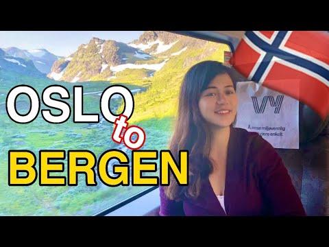 WORLD'S BEST TRAIN RIDE: Oslo to Bergen, Norway (First Class Private Room) | FATRINA RAINE