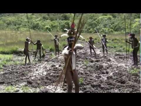 Papua TRIBAL fight 部落的戰鬥 आदिवासी लड़ाई pertarungan suku