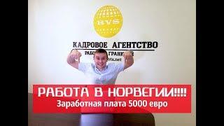работа за границей (за рубежом) для русских: биржи, вакансии удаленная работа