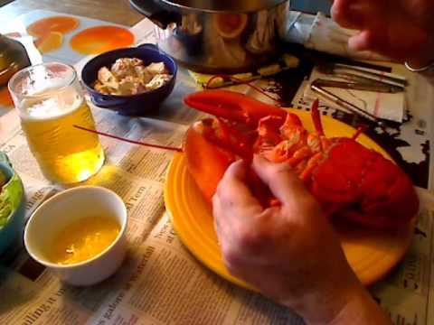 The Great Maine Lobster Experience