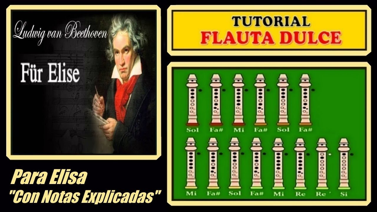 Beethoven - Fur Elise | Recorder Notes Tutorial - YouTube