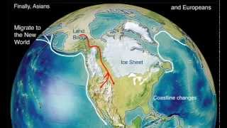 Clovis Migration- Early migrations from Asia to North America
