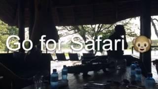 [VLOG] -Repost- Afrique Du Sud Février 2015
