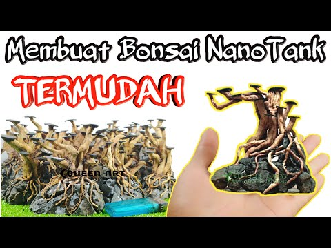 cara-termudah-membuat-bonsai-aquascape-nano-tank