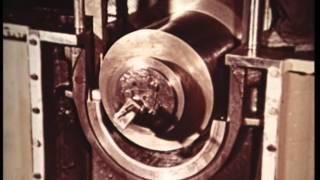 Auf Schritt und Tritt (1955)