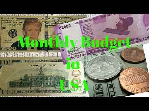 Monthly Budget in USA||Living Cost||CarEMI,Mobile,Insurance,Electricity & Kids Expenses